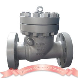 900Lb full bore swing check valve