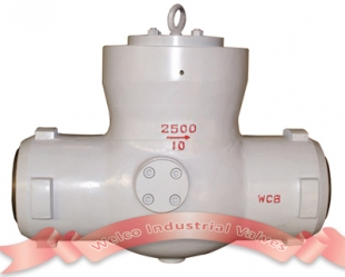Check valve with pressure seal cover design