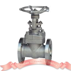 Stainless steel forged steel gate valve