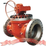 600Lb top entry ball valve