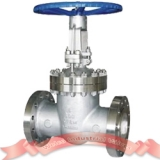 900LB stainless steel gate valve