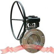 High Performance Hard Seal Butterfly Valve
